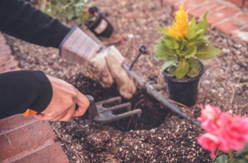 Méthode de jardinage